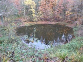 Zu sehen ist ein kreisrunder kleiner See inmitten eines Mischwaldes im Herbst.