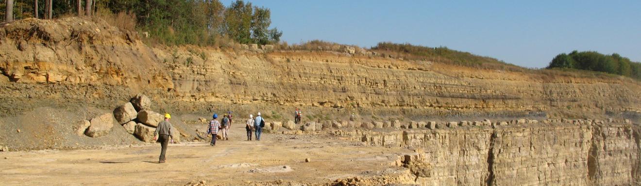 Blick auf die obere Sohle eines Steinbruches. Zu sehen ist eine langgestreckte, gelblich braune Wand mit bewachsener, nach rechts abfallender Kuppe. Rechts ist ein Teil der oberen Sohle weggebrochen, so ist die untere Sohlenwand sichtbar.