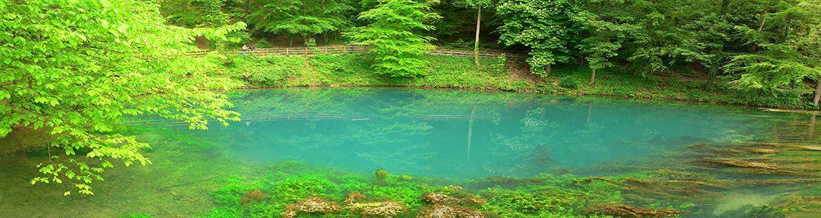 Blick auf einen ovalen, türkisfarbenen See. Im Hintergrund begrenzen Bäume sowie das erhöhte Ufer den See. Im Vordergrund fällt der teils steinige, teils mit Wasserpflanzen bedeckte Seeboden steil ab.